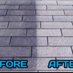 Roof-cleaning-Picture 01
